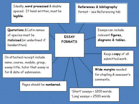 Best Tips To Write An Effective Essay - Picture