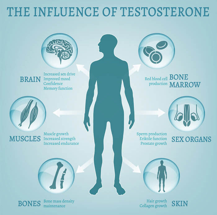 How to Balance And Increase Low Testosterone Levels - Chart