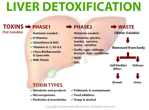 Best Ways To Remove Toxins From Body And Cleanse The Liver - Picture