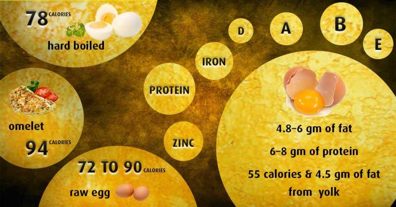 10 Interesting And Creative Egg Recipe - Nutrition of Egg