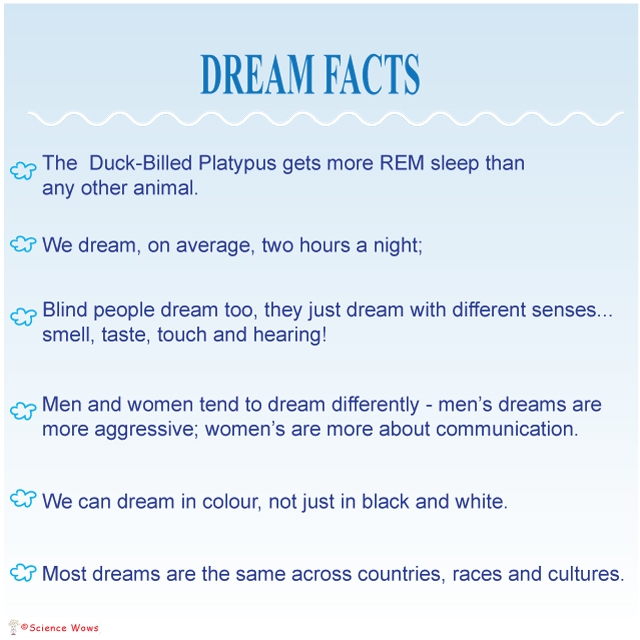 Why Do We Dream - Facts