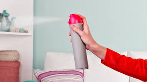 Best DIY Air Fresheners - Picture