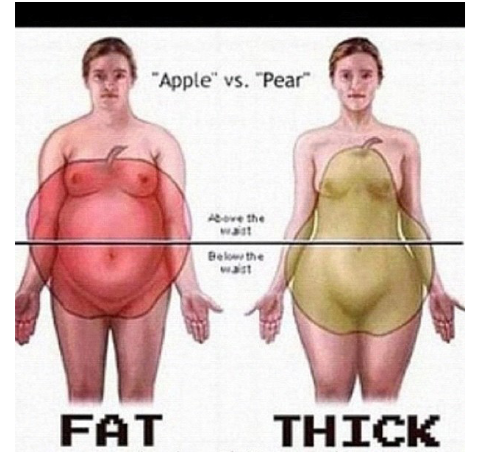 Different Between Fat And Thick - DIagram