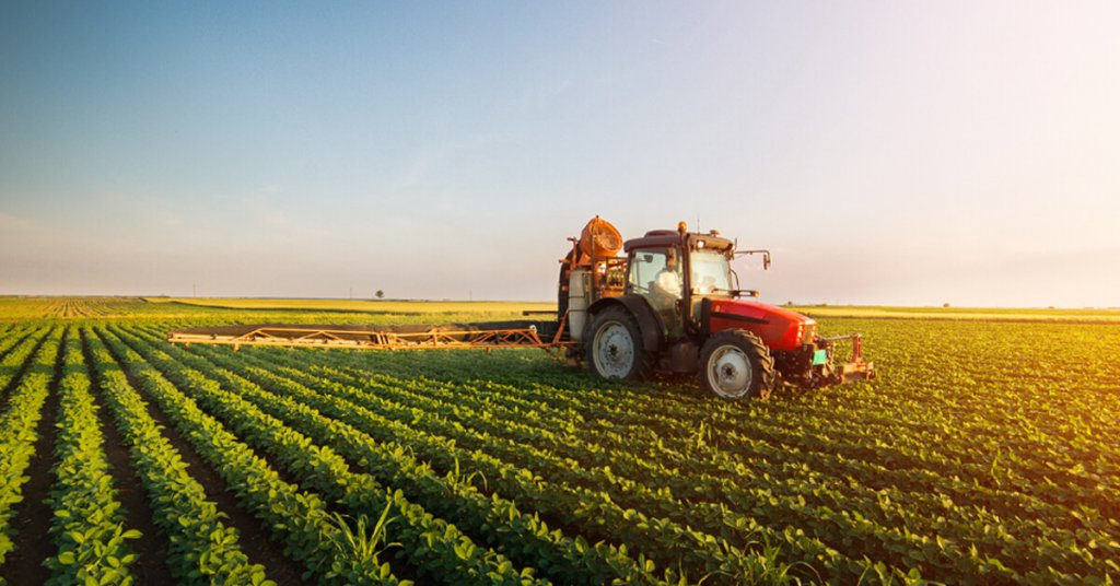 Difference Between Agriculture And Horticulture - Agriculture