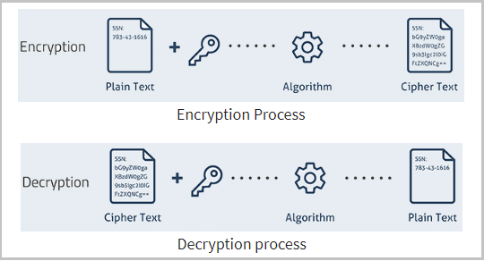 Difference Between Encryption And Decryption - Process of encryption and decryption