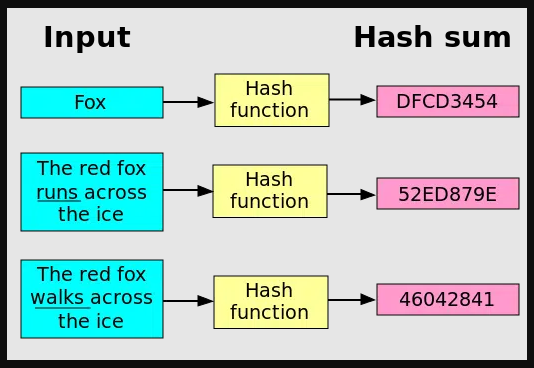 Difference Between Hashing And Encoding - what is hashing